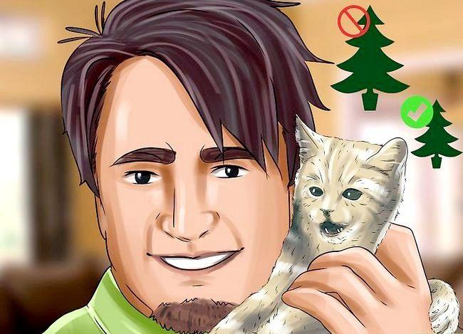Imagine intitulată Proba pisică a pomului de Crăciun Pasul 11