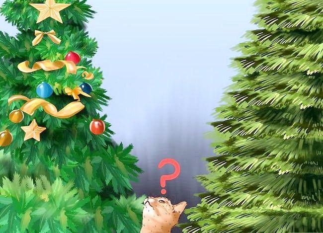 Imaginea intitulată Cat Proof Tree Tree dvs. 10