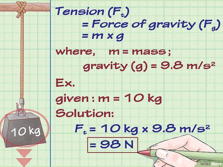 Calculați forțele (forțele de întindere) din fizică