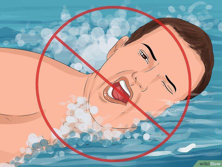 Imaginea intitulată în siguranță în înot cu Piranhas Pasul 5