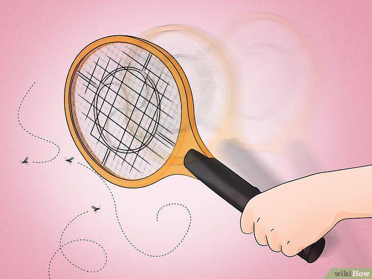 Cum să scapi de țânțari