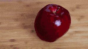Efectuarea merelor de zahăr