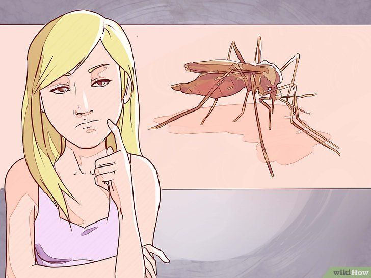 Distingeți între malarie, febra dengue și febra chikungunya